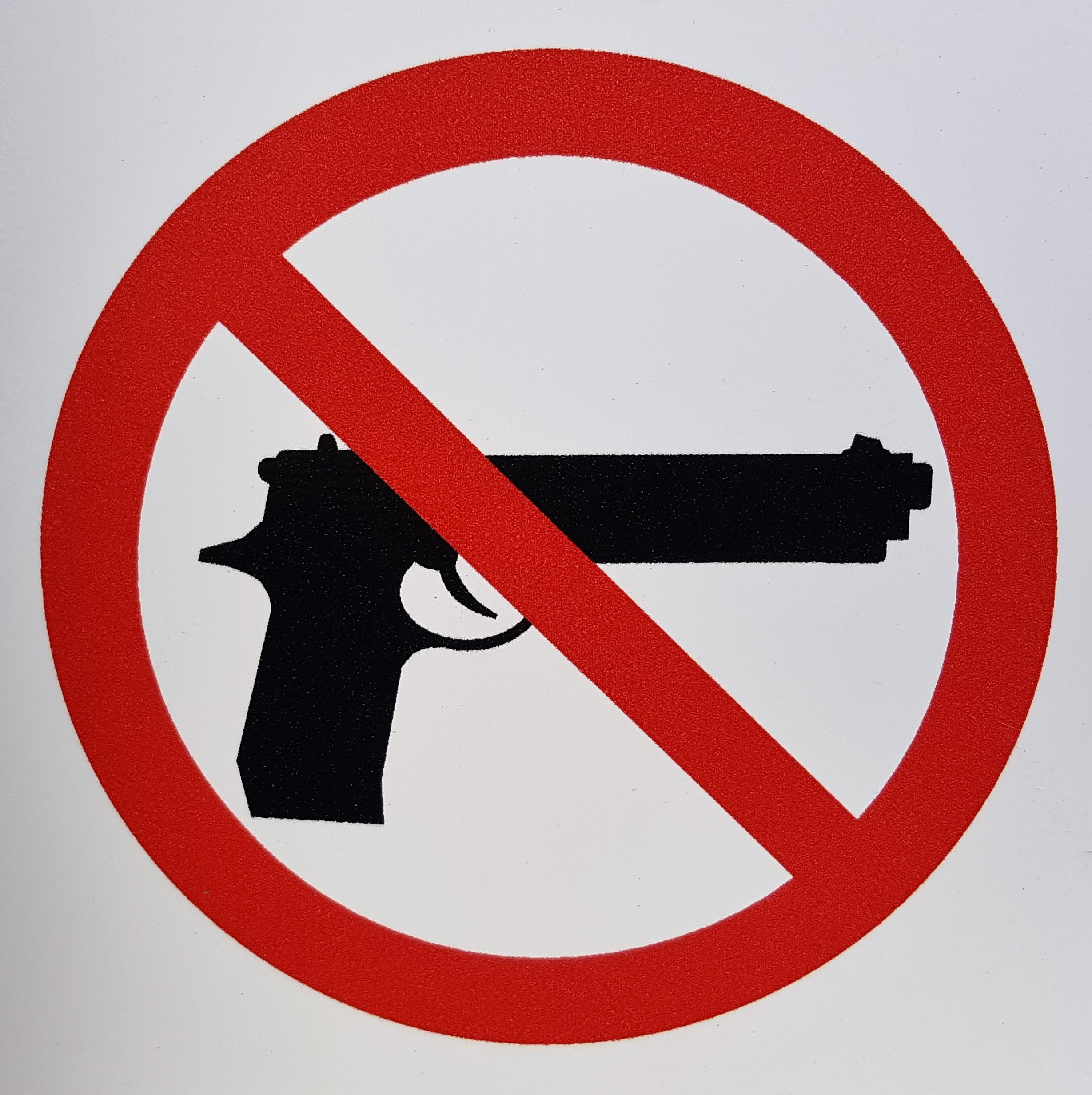Essays on gun control debate