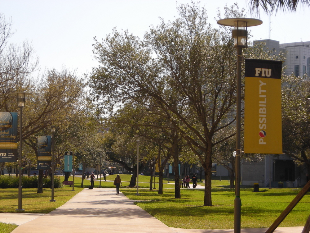 FIU College Of Nursing And Health Sciences Welcomes New Faculty This ...
